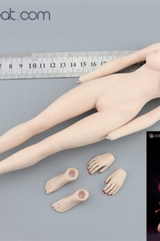 1/6 Scale Japanese Warrior Nōhime Seamless Large Breast Pale Body