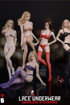 Fire Girl Toys FG069 Seamless Stocking Lace Lingerie Set 1/6 Scale